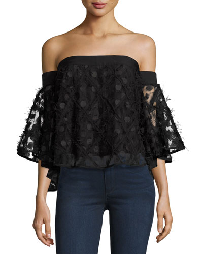 Semisheer Embroidered Off-the-Shoulder Top, Black