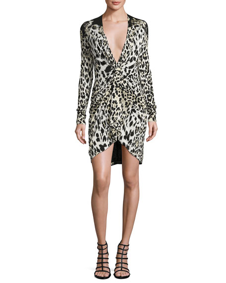 Leopard-Print Long-Sleeve Deep-V Dress, Leopard