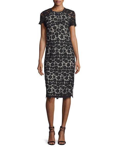 Short-Sleeve Lace Midi Sheath Dress, Black/Ivory