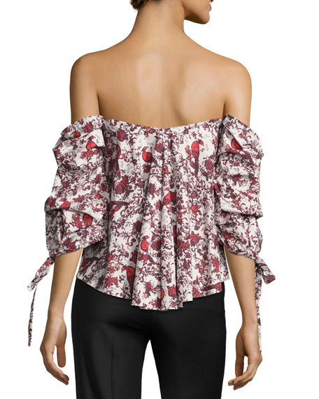 Gabriella Off-the-Shoulder Bird & Floral Bustier Top, Red Pattern
