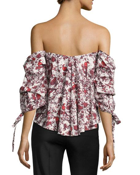 Gabriella Off-the-Shoulder Bird & Floral Bustier Top, Red Pattern