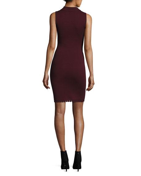 Embellished Collar Sleeveless Dress, Wine