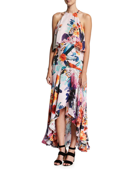 Pamela Sleeveless Floral Silk Popover High-Low Gown, Happy Garden