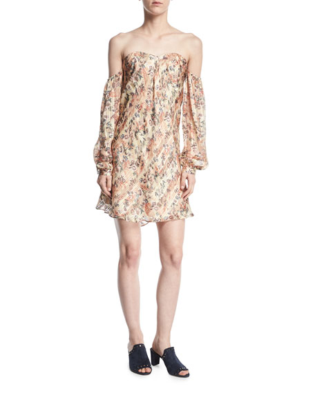Haute Hippie My Amour Off-the-Shoulder Floral-Print Silk Dress