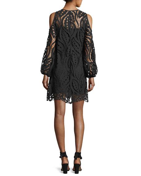 Veretta Cold-Shoulder Lace Guipure Cocktail Dress