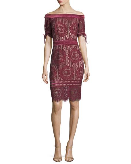 Tadashi Shoji Off-the-Shoulder 1/2-Sleeve Lace Cocktail Dress