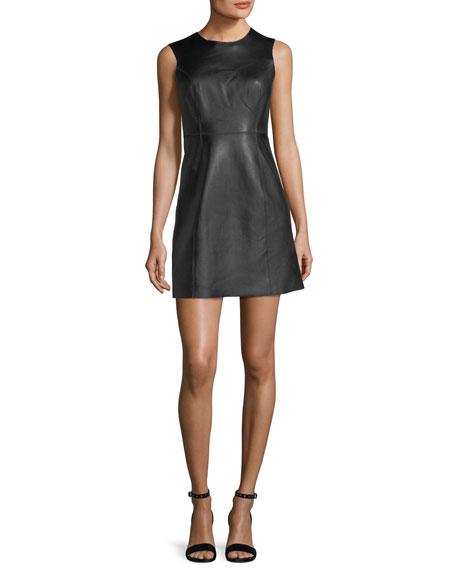 Rag & Bone Loxley Sleeveless Leather Mini Dress