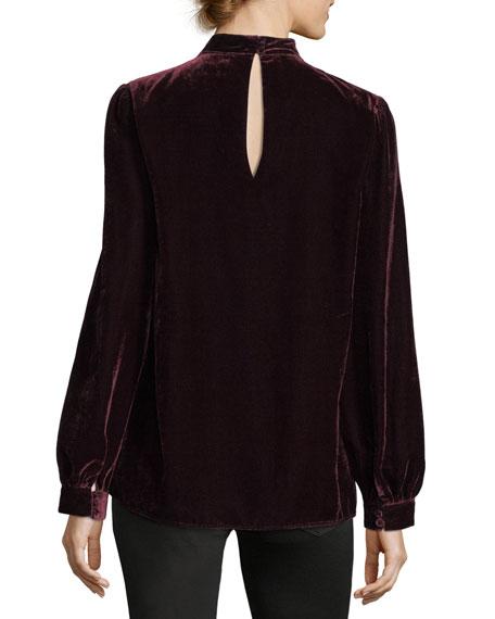 Tamar Choker V-Neck Long-Sleeve Velvet Blouse