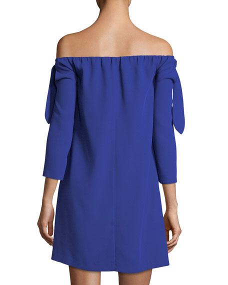 Solanga Off-the-Shoulder Mini Dress