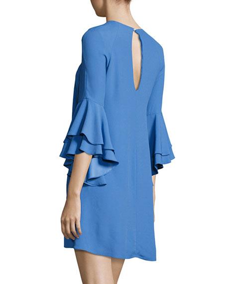 Melany Ruffle Sleeve Mini Dress
