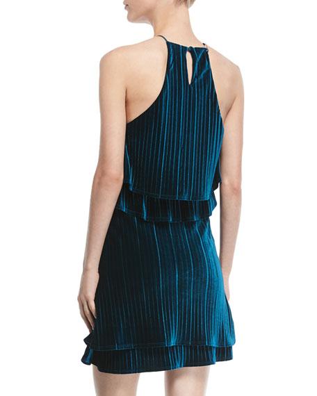 Cosgrove Halter Velvet Cocktail Dress