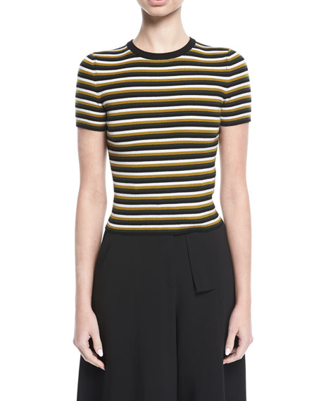 A.L.C. Kingston Crewneck Striped Wool Top