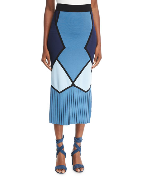 Toque Colorblocked Fitted Midi Skirt