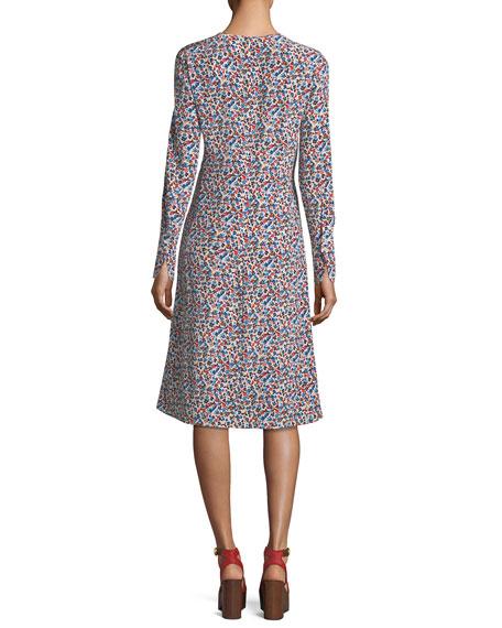Charlotte Wildflower-Print Long-Sleeve Dress