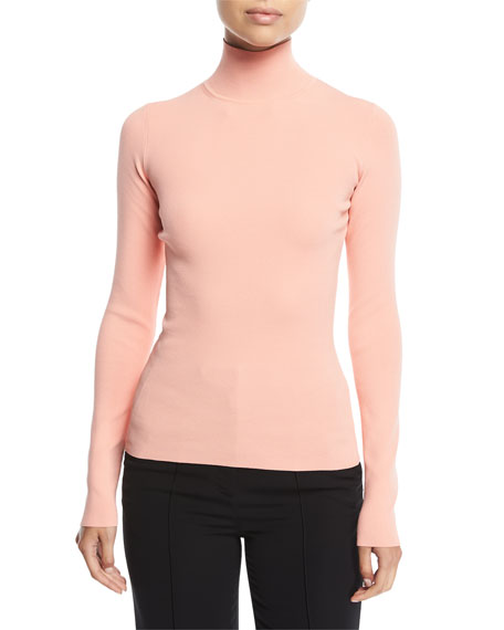Long-Sleeve Turtleneck Fitted Pullover Top