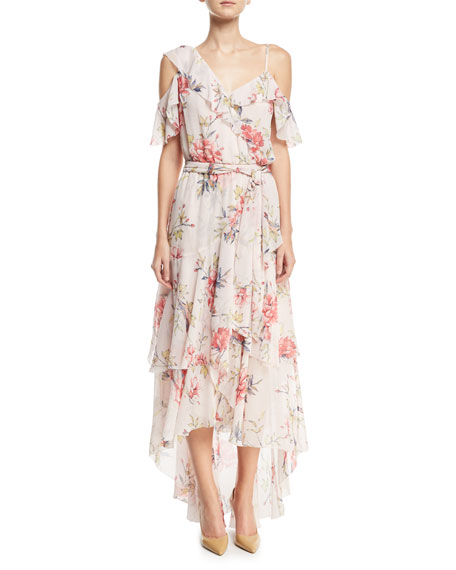 Joie Cristeta Floral-Print Sleeveless Silk Chiffon Dress