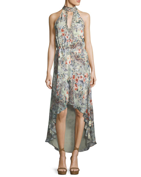 Haute Hippie Wished Upon Sleeveless Floral-Print Draped Silk
