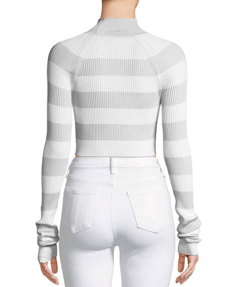 Breeze Tube Turtleneck Striped Crop Knit Top