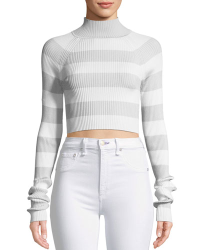 Breeze Tube Turtleneck Striped Crop Knit Top