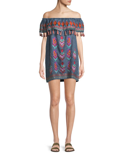 Malani Off-the-Shoulder Embroidered Denim Dress, Plus Size