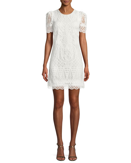 Mestiza New York Embroidered Organza Mini Cocktail Dress