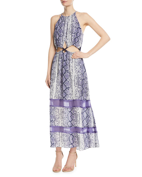 Ramy Brook Norina Sleeveless Snake-Print Silk Maxi Dress