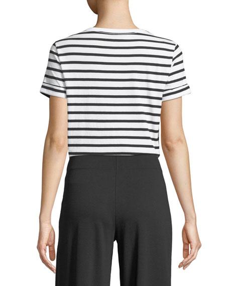 natural wonder striped shirt