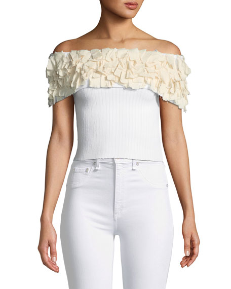 Kora Fringe Off-the-Shoulder Knit Crop Top