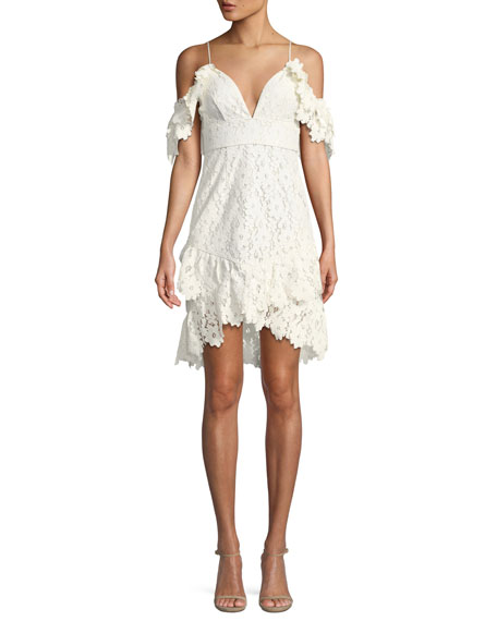Saylor Dana Painted Lace Cold-Shoulder Mini Dress