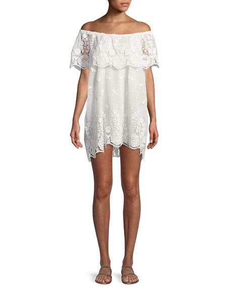 Dragon Fly Off-the-Shoulder Scallop Lace Coverup Dress