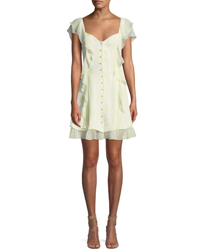 Georgia Sweetheart Button-Down Silk Chiffon Dress