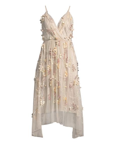 Lisandra Floral-Appliqué Dress