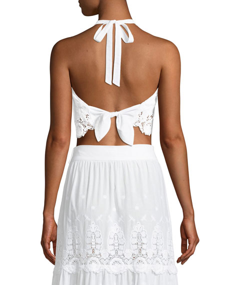 Jasper Embroidered Lace Halter Crop Top