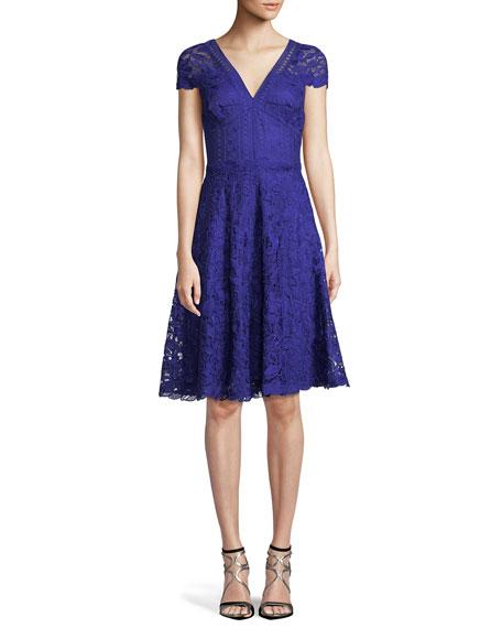 Lace Fit-&-Flare V-Neck Dress