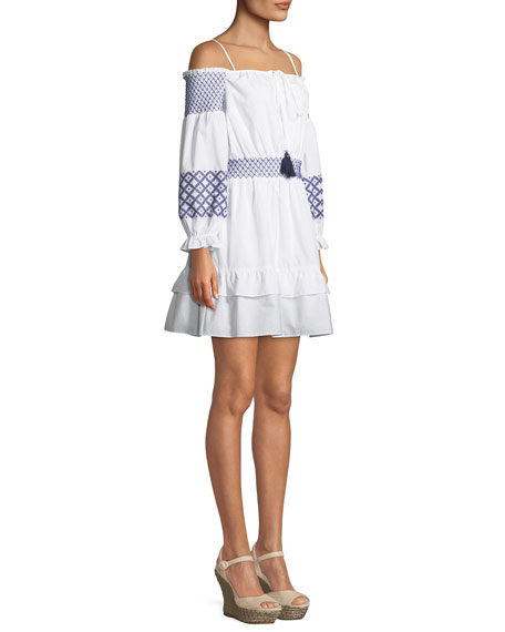 Brittany Off-the-Shoulder Embroidered Mini Dress