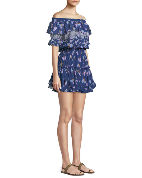 Darcil Floral Off-the-Shoulder Ruffle Dress