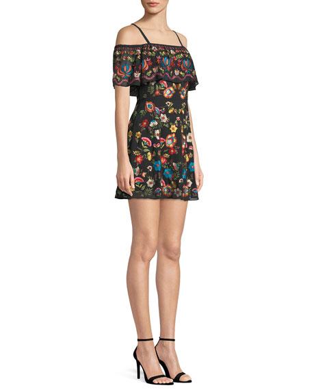 Francina Embroidered Off-the-Shoulder Mini Dress