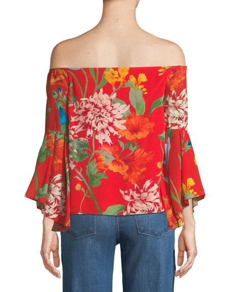 Shera Off-the-Shoulder Floral-Print Top