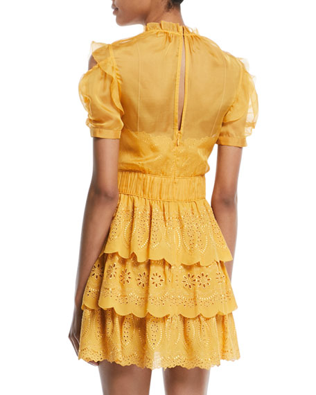 Embroidered Chiffon Tiered Mini Dress