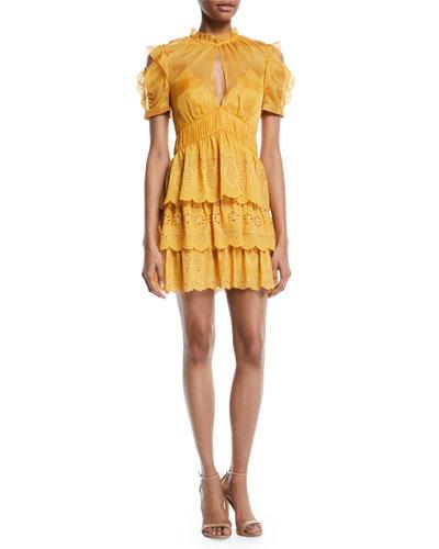 Embroidered Chiffon Tiered Mini Dress