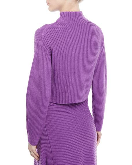Structured Merino Wool Rib Turtleneck Sweater