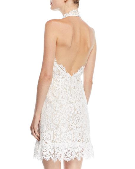 Halter Mini Dress in Lace
