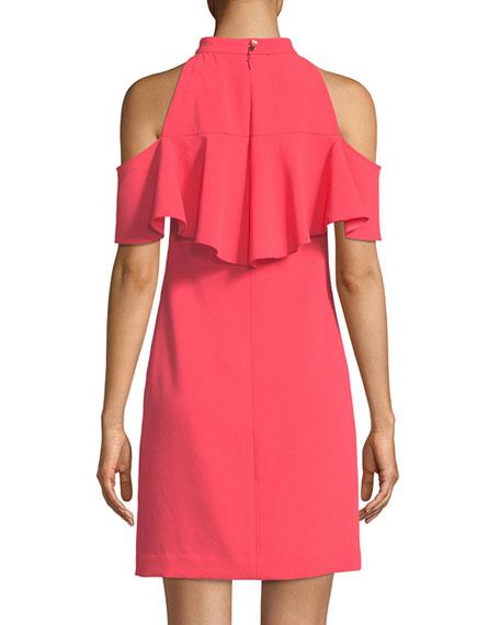 Laelia Ruffle Cold-Shoulder Mini Dress