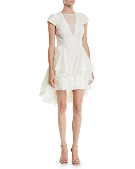 Halston Heritage Cap-Sleeve Lace Dress w/ Skirt Overlay