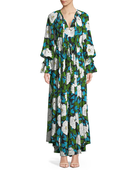 Diane von Furstenberg Long-Sleeve Floral Cinch Maxi Dress
