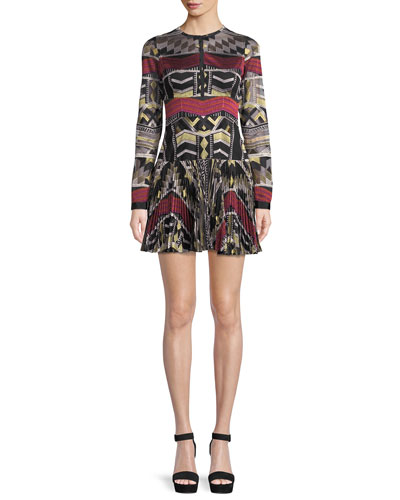 Nalory Pleated Long-Sleeve Embroidered Mini Dress