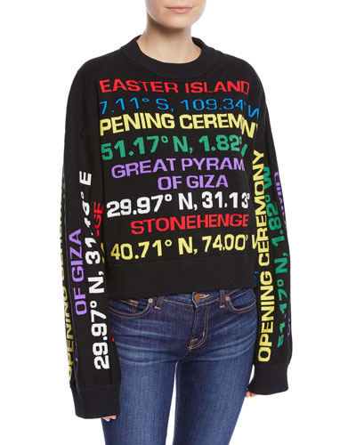 Destination Hand-Knit Graphic Crewneck Sweater