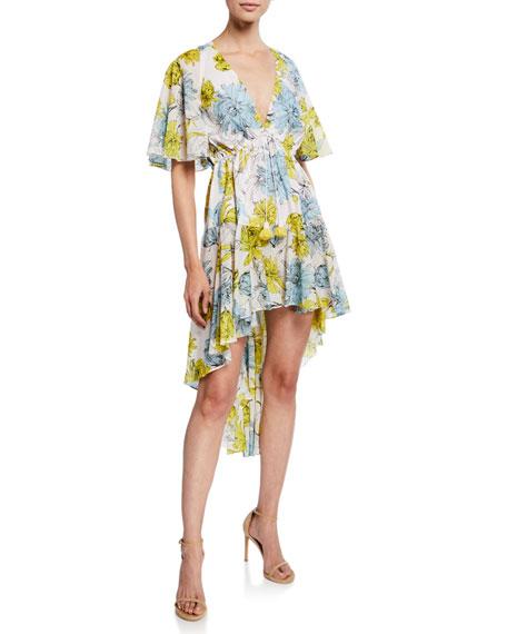 Alexis Dresses Idella Floral-Print V-Neck Short-Sleeve High-Low Dress