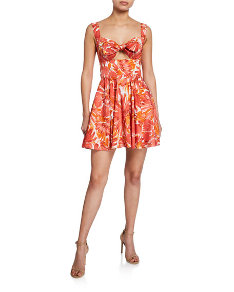 Alexis Dresses ILDA FLORAL-PRINT SWEETHEART FIT-&-FLARE DRESS