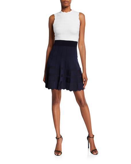 Ted Baker London Colorblock Sleeveless Scallop-Edge Dress
